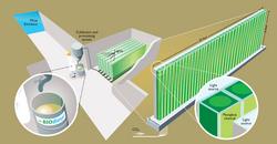 Prime slime: UMR has big plans for underground algae