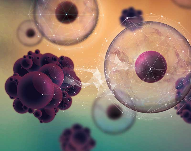 'Cloak of invisibility' sneaks drugs into cancer cells