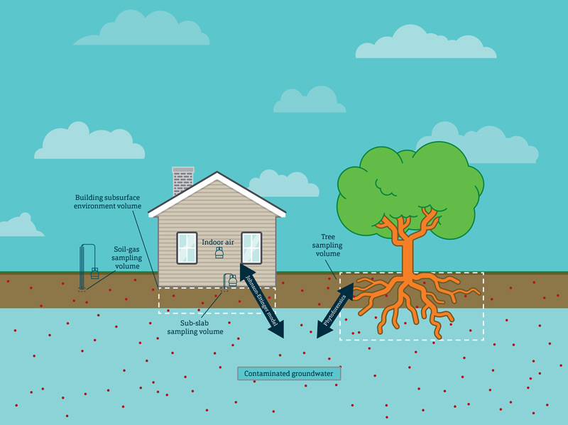 Groundwater illustration