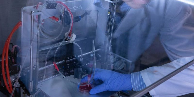 Recipe for organ tissue creation